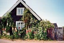Home / by Elizabeth Lahendro