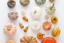Autumn / by Elizabeth Lahendro