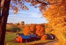Country Living / Farms, mills, Country Stores, Farm houses / by Ruth Christianson
