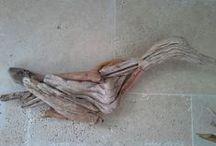 Driftwood / Driftwood