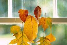 Autumn / by Candis Hidalgo