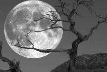Moonstruck! I love Moonstruck