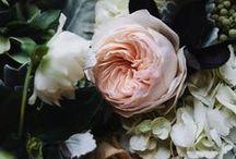 Flowers / Flowers everywhere!