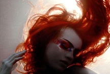Orange Slice / All things orange! / by Heather De Bernardi