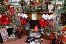 Winter/Christmas Decor / Winter & Christmas decorations. Some from our friends here on Pinterest and others from our stores. (http://www.skh.com/home-garden/departments-2/the-christmas-shop/)