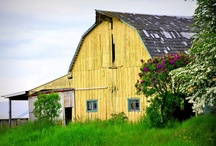 ~Country Living~ / by Kellie@SouthernSashay