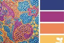 {Color Palettes}