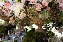 Tablescapes / by Terri Day