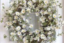 Wreaths / by Terri Day