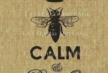 Bees / by Paula McCann