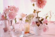 Shelley / Pretty, vintage inspired pastel pinks, creams and apricot hues for the bouquet. Slightly more festive and elegant for the reception with the inclusion of hot pinks and magentas in multiple vases and glassware at different heights, sizes.