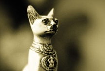 ART:  CATS, Miscellaneous / by Linda Borger