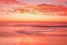 colors : coral vibe / by Dalay Lapa