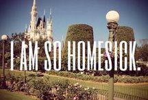 ºOº Disney Obsession / by Tanya Parisi