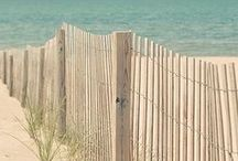 Beachy / by Tanya Parisi