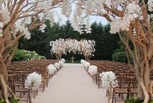 More Wedding Ideas / by Danielle Muñiz