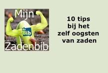 Zelf zaden oogsten / Alles wat u moet weten om zelf zaden te oogsten uit uw tuin! / by Mijn Zadenbib