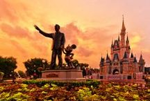 ºOº Disney World: The Most Magical Place on Earth / by Tanya Parisi