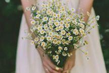wedding | the bouquet
