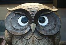 I Love Owls / by Deb Pang Davis