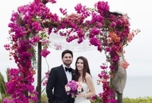 Chuppahs / Welcome to our board with tons of Chuppah (Huppah) Inspiration, and Jewish & Jewish-Inspired Wedding Ideas. View more inspiration plus free Jewish Wedding Planning Tools at www.mazelmoments.com. Thank you and enjoy! / by Mazelmoments.com