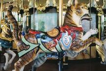 Carousel Cats / by Kitty Olsen