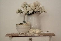 Vignettes  / by Tina Cheek
