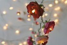 Luminous Lighting / Nothing Like Romantic Lighting To Set The Mood! / by DIY BOARDS