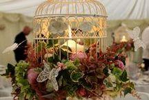 Wedding Ideas / Wedding Ideas / by DIY BOARDS