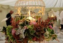 Wedding Ideas / Wedding Ideas and Inspiration / by DIY BOARDS