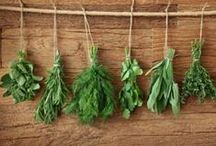 DIY Herb Garden / DIY Herb Garden / by DIY BOARDS
