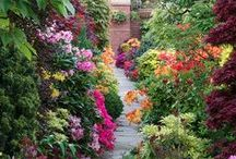 Flower Gardens / Beautiful Flower Gardens, Best DIY Flower Gardening Ideas and Do It Yourself Garden Projects for Your Yard and Home