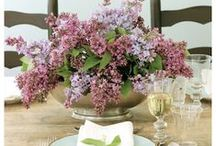 Lavender Ideas / Lavender Ideas, Lavender Recipes and Projects