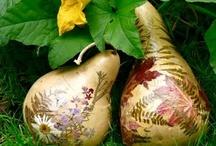pressed florals / by Chris Bak