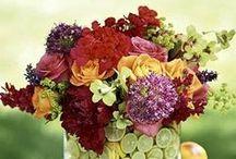 Flower Arrangements / Flower Arrangements: Beautiful Flowers, DIY Flower Arrangements, Centerpiece Inspiration, Ideas, How-to & Tutorials on Pinterest.