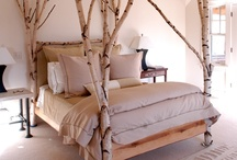 In the Bedroom / Restful, romantic, rustic or dreamy, here are some ideas to snuggle up with...