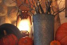 The Pumpkin Patch / Autumn/Fall decor / by Beth Hooper