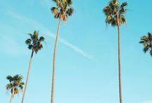 // California