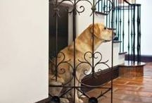 *Pets in Mind* / Renovating your home? Don't forget special touches for your furry friends!