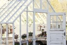 Backyard Retreats, Greenhouses, Etc / by Virginia Twedell