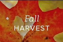 Fall Harvest / There is something about fall that feels magical. Leaves turning warm hues of orange, yellow and red and days that are brisk and clear.  Here, a board dedicated to the sights, sounds and smells of an inspiring season.     / by Gemvara.com