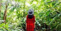 Travel + Wanderlust / Travel, Adventure, Kid Friendly Places, and Wanderlust