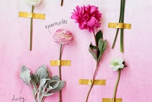 Flowers. / by Sharon Matthijsse