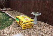Gardening / Tips, tricks and garden design ideas for creating the perfect garden.