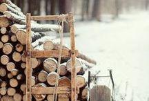Winter / by Sharon Matthijsse