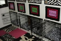 Pet DIY ideas and spaces