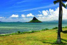 oahu hawaii. / by Cori Trimner