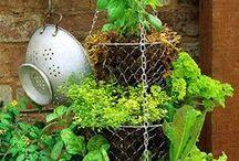 Tubs, Planters & Garden Decor!