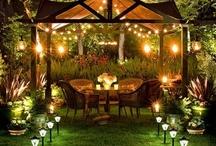 Garden / #garden #outside