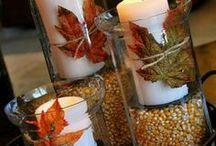 Seasonal: Fall/Halloween/Thanksgiving / by Sarah Hewitson